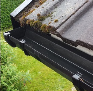 Gutter Cleaning in Birkdale